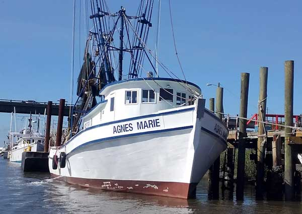 Tybee History Tours